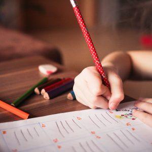Responsibility Checklist for Kids